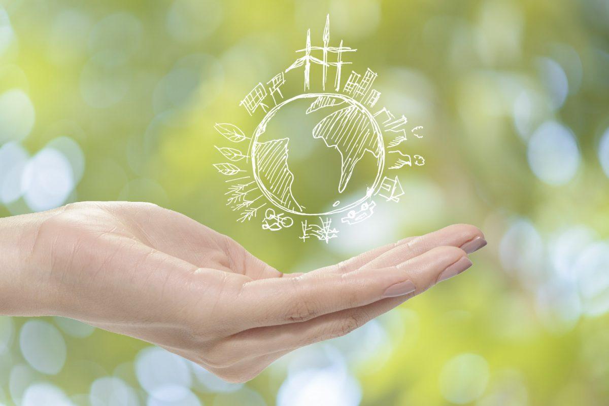 Hoje é o Dia do Consumo Consciente